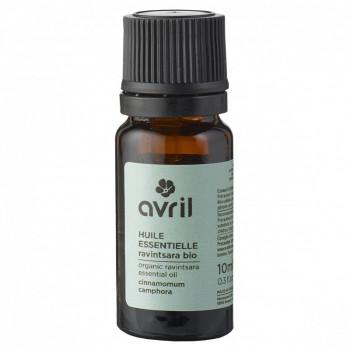 Huile essentielle Ravintsara bio et chémotypée - 10 ml