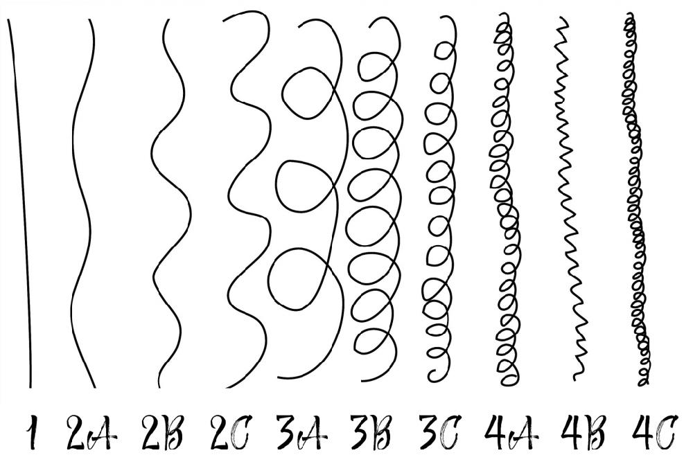 Types de cheveu
