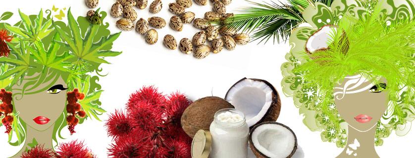Huile de ricin lait de coco