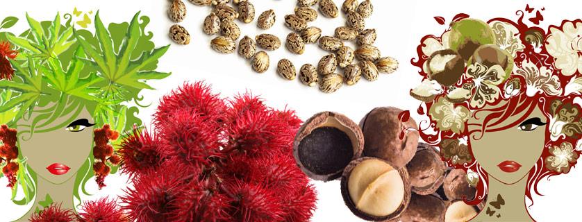Huile de ricin ou huile de macadamia