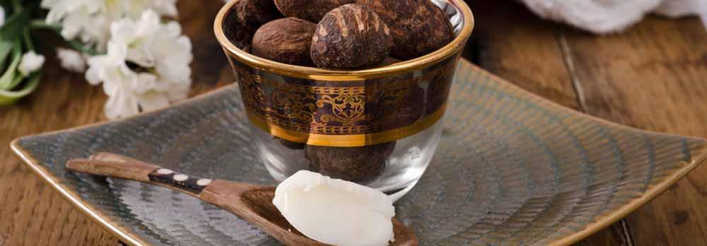 noix de l'arbre à beurre
